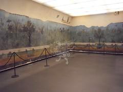Gli affreschi della villa di Livia a Palzzo Massimo _07