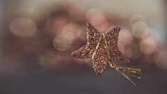 You are a star (Ro Cafe) Tags: lensbaby odile sweet50macro thankyou bokeh star present glitter sparkle nikond600