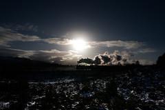 Caledonian Railway No. 828 - Granish Moor (Jonathon Gourlay) Tags: snow mountains cairngorm 828 caledonian railway steam train santa special cold winter