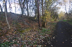 Trackbed & concrete support, Dodworth   (Silkstone - Wath old railway)    November 2017 (dave_attrill) Tags: dodworth great central railway electrified woodhead sheffield victoria manchester picadilly closed 1970 1955 stocksbridge engine transpennine upper don trail penistone wortley wadsley neepsend dunford thurgoland tunnel oxspring barnsley junction huddersfield allweather cycleway bridleway footpath remains silkstone 2016 1981 dove valley november 2017 dovevalleytrail worsbrough worsbroughbranch