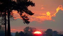 Feuerrote Sonne (swetlanahasenjäger) Tags: herbsstimmungdersonne saariysqualitypictures nwn sunsetwednesday quartasunset fotografíavisión coth5 sunrays5 onlythebestofflickr magicmomentsinyourlife