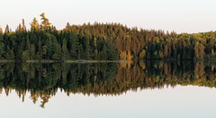 'Right Down the Middle' (Canadapt) Tags: lake shoreline reflection mirror calm trees keefer canadapt