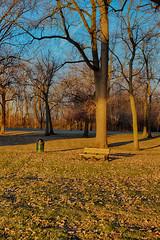 Enjoying Golden Hour (kendoman26) Tags: happybenchmonday bench hdr nikhdrefexpro2 niksoftware goldenhour sonyalpha sonya58 sonyslta58 sonyphotographing strattonstatepark travelillinois enjoyillinois