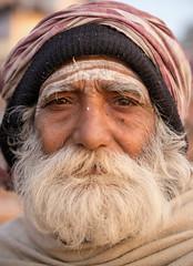 Varanasi Man (Jeff Williams 03) Tags: man beard varanasi india