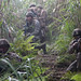 U.S. Marines simulate raids at Jungle Warfare Training Center in Okinawa during 3rd Marine Division annual squad competition