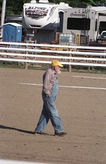 Albion Fair 2017 (rentavet) Tags: dynax505si analog drafthorses albionpafair konicacenturia400asa