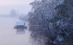 A December morning (Aleksandar Dragićević) Tags: december water nature light snow winter morning trees river frost ice serbia balkan samsung kzoom view cold fog landscape