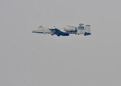 "U.S. Air Force A-10 at Osan Air Base, ROK, participates in Exercise Vigilant Ace (#PACOM) Tags: ""uspacificcommand pacom"" osanairbase gyeonggido republicofkorea"