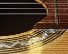 La résurrection (J-BENOIT) Tags: macromondays musicalinstruments memberschoicemusicalinstruments