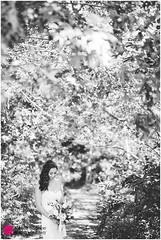 Martha's-Vineyard-fall-wedding-MP-160924_06 (m_e_g_b) Tags: bostonweddingphotographers bostonweddingphotography edgartown edgartownwedding marthasvineyard mathasvineyardwedding newenglandweddingphotographers newenglandweddingphotography creativeweddings wedding weddingphotography