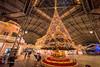 Tokyo Disneyland 2017 25 - World Bazaar Christmas Tree (JUNEAU BISCUITS) Tags: tokyodisneyland japan christmas christmastree nikond810 nikon themepark disney disneyresort disneyparks waltdisney worldbazaar