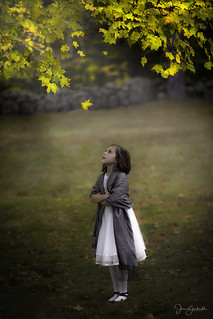 Little Girl in the Maples
