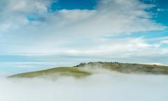 above the clouds (Anthony White) Tags: england unitedkingdom gb northdorsetdistrict sel2470gm2 ilce7rm2 a7r firecrestndsoftedgegrad06 firecrestpolariser mist misty