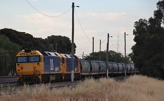 BL26 and BL31 are stabled on a loaded grain in Murtoa yard