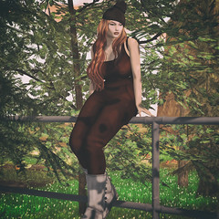 Autumn Dreams (Anna Rain DJLdyH3ll Adored- ClientListopen) Tags: doe wowskins perch designershowcase reign imageessentials secondlife