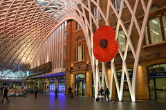 Poppy Days (dhcomet) Tags: london lattice frame support poppy seller armistice remembrance red station concourse