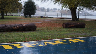 Autumnal glimpses: Kits Beach in the rain