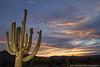 Layer Clouds (Eric Binns Photography) Tags: saguaro cactus sunset clouds desert sonorandesert offcameraflash offcameralighting strobist pocketwizard southwest arizona tontonationalforest outdoors outside sky