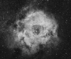 Caldwell 49 in Ha (kees scherer) Tags: rosette nebula ha ngc2237 ngc2238 ngc2239 ngc2244 ngc2246 astropixelprocessor qhy16200