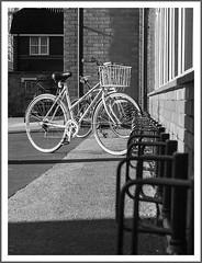 bos-walkaround-1090425b+w-171117 (Peadingle) Tags: bicycle racks black white bw