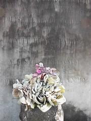 New Orleans (Diane Pappafotis) Tags: cemetery neworleans nikon coolpix headstone flowers graveyard digital pointandshoot