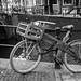 Bicycle+in+Amsterdam%2C+Netherlands