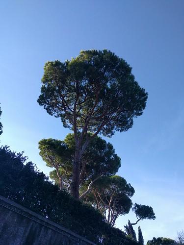 Rome.Рим.