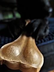 Bone rhymes with stone (Espykrelle) Tags: macromondays macro hmm bone dog os chien theme explore animal closeup 7dwf