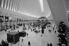 NYC (Mr. Drysdale) Tags: nyc manhattan bw monochrome oculus wtc