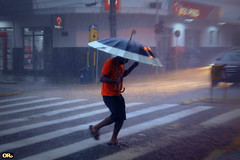 Heavy rain with some red, gray and white (Otacílio Rodrigues) Tags: chuva rain homem man guardachuva umbrella rua street faixadepedestre crosswalk zebra travessia walking luzes lights placas signals prédio building streetphoto candid urban resende brasil oro cidade city stphotographia