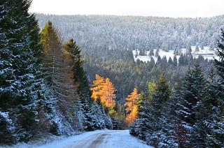 ...sur la route  -  ...on the road