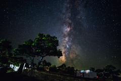 Milky Way in Ikaria (free3yourmind) Tags: milky way ikaria icaria greece summer night sky stars starry trees beauty island dark skies