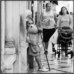 Street with dog and old lady_Hasselblad (ksadjina) Tags: 6x6 carlzeisssonnar150mmf14 coimbra fujiacros100 hasselblad500cm nikonsupercoolscan9000ed porto portugal rodinal analog blackwhite film scan street