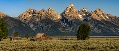 Mornings First Rays (Ron Drew) Tags: d800 national park grandtetonnationalpark antelopeflats moultonbarn mormonrow glacier nikon morning sunrise summer usa wyoming landscape outdoors