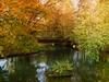 DSC08034 (apploadr) Tags: autumn nature automne otono jesien season trees arbres arboles saison parc park bridge pont eau water etang reflection осень природа времягода отображение вода пруд красочно colorful couleurs colors