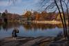 Snapping Turtle Pond (CVerwaal) Tags: autumn beresford centralpark delacortetheater photographers turtlepond newyork ny usa fujifilmx100t