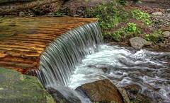 Water flows (kud4ipad) Tags: 2017 ukraine zakarpattia creek waterfall water grass rock stream