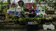 The Greengrocer (voxpepoli) Tags: thànhphốcaobằng caobằng vietnam vn greengrocer woman streetvendor streetlife streetseller elderlypeople market stall shop old wrinkles leica food vegetables