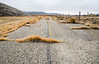 Road to Nowhere (maytag97) Tags: maytag97 nikon d750 abandoned unused closed neglected deteriorated outdoor fence gray grey sky cloud lonely old street highway road desert route landscape car asphalt america desolate way usa automobile