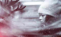 Bliss (limebluphotography) Tags: photos deckthehalls christmascelebration photography family decorate holidayseason celebration cold christmas instawinter winter instasnow photo cantwait art gift snow decorating pic season christmasbook artists artistic pics water christmasblues nature reindeer children magic holiday vacation wonder limebluphotography model style fashion nose glow portrait beauty sundaylights
