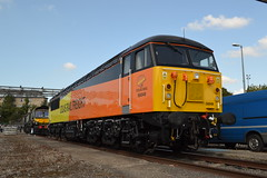 Colas Rail 56049 (Will Swain) Tags: seen old oak common depot open day 2nd september 2017 greater london capital city south east train trains rail railway railways transport travel uk britain vehicle vehicles country england english ooc ooc111 111 west colas 56049 class 56 49