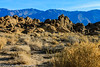 Owens Valley-82 (Denise Noelle Photography) Tags: owensriver bishopca sierranevadamountains monolake lonepine junelake mammothlakes