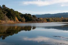 Searsville Lake (_quintin_) Tags: searsville california jasperridge