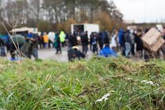 (c)SJField 2017 -6214IMG_62142017 (sarahjanefield) Tags: csarahjanefield2017 justshelter november2017 dunkirk refugees wwwsarahjanefieldcouk wwwsarahjanefieldcom