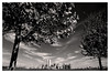 New York City 1999 (jmvanelk) Tags: newyork newyorkcity nyc blackwhite monochrome kodaktrix nikonfe nikkor24mm analog film manhattan twintowers libertyisland trees