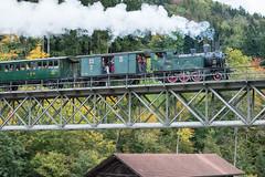 DVZO (Guy Goetzinger) Tags: nikon goetzinger railway train steam viadukt viaduct zug lok dampflok vapeur daylight historic tourism dvzo switzerland bauma
