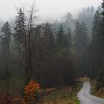 road to November thumbnail