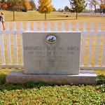 Midnight Sun - The Horse of the Century - Franklin, TN thumbnail