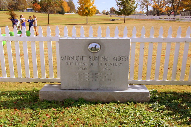 Midnight Sun - The Horse of the Century - Franklin, TN
