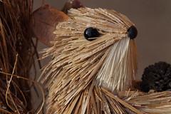 Alone with a Cone (Patrick JC) Tags: stonerhymingzone macromondays craft made straw